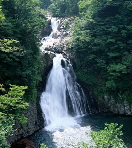 壁纸 风景 旅游 瀑布 山水 桌面 445_500