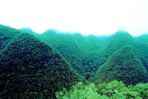 贵州茂兰风景图片